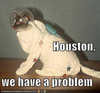 houston we have a problem cat