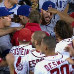 nationals cubs fight