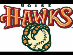 Gleyber Torres Promoted to the Boise Hawks
