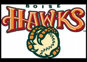 boise hawks feature