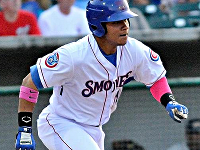 willson contreras smokies
