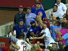Addison Russell Steals a Hit, Cardinals Fan Tries to Steal a Glove (VIDEOS)