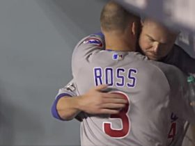 David Ross is a Popular Non-Player Target and Other Bullets