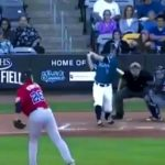 BIF: Lightning Fast Catcher Makes an Impossible Catch