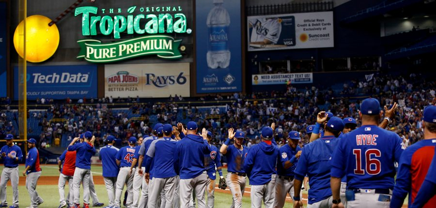 Cubs-win-tropicana-field-narrow-photo-by-brian-blancogetty-images