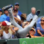 Tommy La Stella Made a Crazy Catch Going Into the Stands (VIDEO)